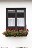 Window with Flower Decoration  Hollokoe  Hungary