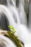 Lower Lakes  Waterfall Slapovi M Trnine  Plitvice Lakes  Plitvicka Jezera  Croatia