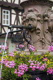 Fountain Detail  Miltenberg  Germany