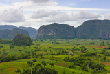 Limestone Hill  Farming Land in Vinales Valley  UNESCO World Heritage Site  Cuba