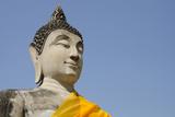 Buddha Statue  Wat Phra Chao Phya-Thai  Ayutthaya  Thailand