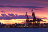 Cargo Cranes  Port of Vancouver  Vancouver  British Columbia  Canada
