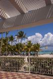 Riu Palace  Bavaro Beach  Higuey  Punta Cana  Dominican Republic