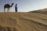 Man Leading Camel on Sand Dunes  Tinfou (Near Zagora)  Morocco  Africa