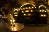 Bishop's Residence  Wine Cellar  Wurzburg  Germany