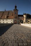 Cobblestone  Stone Bridge  Danube  Regensburg  Germany