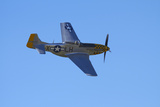 P-51 Mustang  American Fighter Plane  War Plane