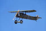 German WWI Fokker D-8 Fighter Plane  War Plane