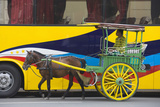 Horse Cart Walk by Colorfully Painted Bus  Manila  Philippines