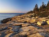 Mt Desert Island  View of Rocks with Forest  Acadia National Park  Maine  USA