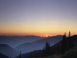 Obstruction Point at Sunset  Olympic National Park  Washington State  USA