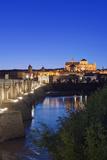 Roman Bridge  Catedral Mosque of Cordoba  Cordoba  Andalucia  Spain