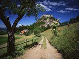 View of Dirt Road Through Field  Reutte  Tyrol  Austria