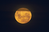 Full Supermoon  Lunar Perigee (Moons Closest Point to the Earth)  New Zealand
