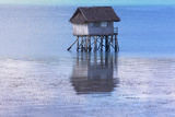 A Small Fishing House in the Water  Bohol Island  Philippines