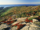 Mt Desert Island  Autumn View  Acadia National Park  Maine  USA