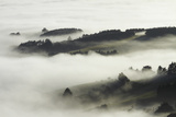 Fog over Otago Harbour and Otago Peninsula  Dunedin  South Island  New Zealand