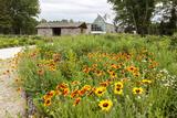 The International Peace Gardens Near Dunseith  North Dakota  USA