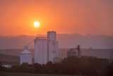 Foggy Sunrise over Grain Elevator  Farm  Kathryn  North Dakota  USA