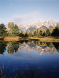 Grand Teton Mountains in Beaver Pond  Grand Teton National Park  Wyoming  USA
