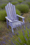 Garden  Adirondack Chair and Straw Hat  Lavender Festival  Sequim  Washington  USA