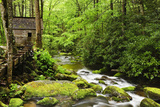 Tub Mill  Roaring Fork Creek  Great Smoky Mountains National Park  Tennessee  USA
