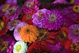 Zinnia's at a Farmer's Market in Savannah  Savannah  Georgia  USA