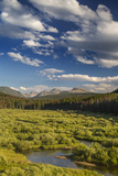 Wise River  Pioneer Mountains  Beaverhead-Deer Lodge National Forest  Montana  USA