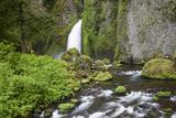 Wahclella Waterfalls  Tanner Creek  Columbia River Gorge National Scenic Area  Oregon  USA