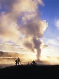 Old Faithful Geyser  Yellowstone National Park  Wyoming  USA