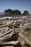 First Beach with Sea Stacks  Olympic National Park  La Push  Washington  USA