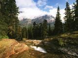 View of Mountain Stream  Glacier National Park  Montana  USA