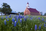 Art Methodist Church and Bluebonnets Near Mason  Texas  USA
