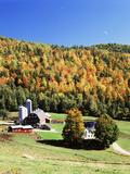 Diamond Heart Farm  Irasburg  Northeast Kingdom  Vermont  USA