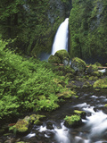Wahclella Falls and Tanner Creek  Columbia River Gorge  Oregon  USA