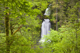 Curly Creek Falls  Lewis River  Gifford Pinchot National Forest  Washington  USA