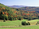 View of Peacham Hills in Autumn  Northeast Kingdom  Vermont  USA