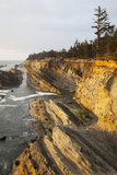 Sandstone Cliffs and Coastline  Shore Acres State Park  Oregon  USA
