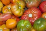 Fresh Tomatoes at a Farmers' Market  Savannah  Georgia  USA