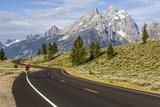Road Biking in Grand Teton National Park  Wyoming  USA
