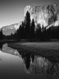 El Capitan Reflected in Merced River  Yosemite National Park  California  USA