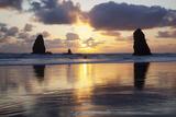 Seastacks at Sunset  Cannon Beach  Oregon  USA