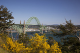 Yaquina Bay Bridge on Highway 101  Newport  Oregon  USA