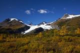 Ice Flows of the Worthington Glacier  Alaska  USA