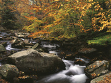 Oconaluftee River  Great Smoky Mountains National Park  North Carolina  USA