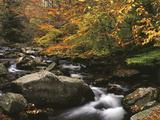 Oconaluftee River  Great Smoky Mountains National Park  North Carolina  USA