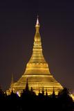 The Shwedagon Pagoda in (Rangoon) Yangon  (Burma) Myanmar