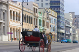 Horse Carriage on the Street  Havana  UNESCO World Heritage Site  Cuba
