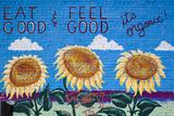 Eat Organic Building Mural  Salida  Colorado  USA