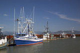Fishing Boats  East Basin Moorage  Columbia River  Astoria  Oregon  USA